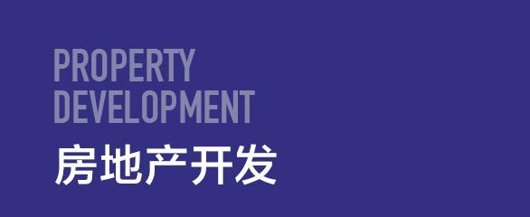 房地产开发